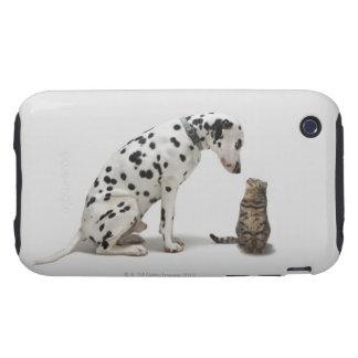 Un perro que mira un gato funda though para iPhone 3