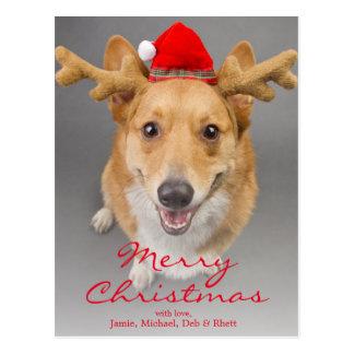 Un perro rojo y blanco del Corgi Galés del Postal