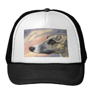 Un perro tímido, hermoso gorro de camionero