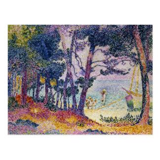 Un pino Grove, 1906 Postal