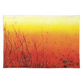 Un placemat vibrante del naranja de dos tonos manteles individuales