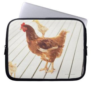 Un pollo y dos polluelos en un piso de madera mangas portátiles