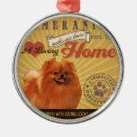Un Pomeranian cariñoso hace nuestro hogar de la ca Adorno
