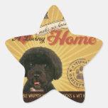 Un Portie cariñoso hace nuestro hogar de la casa Calcomanías Forma De Estrellaes