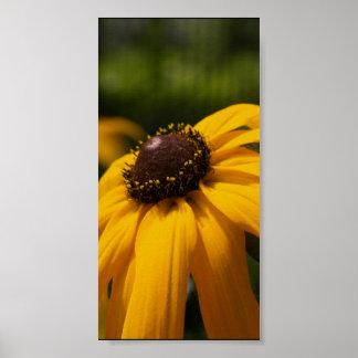 Un poster de la flor