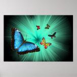 Un poster del viaje de Butterflys