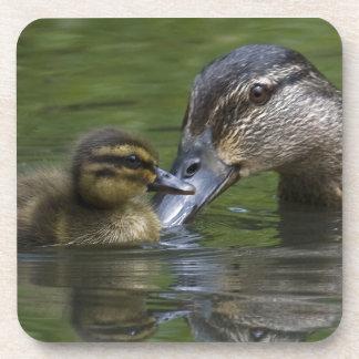 Un práctico de costa del corcho del amor de madre posavaso