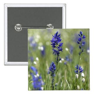 Un prado de la montaña de wildflowers incluyendo pin cuadrada 5 cm