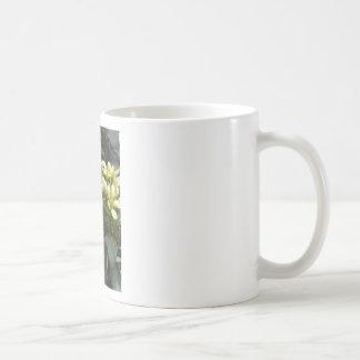 Un primer 2 de la abeja taza básica blanca