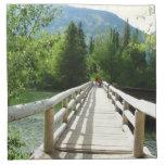 Un puente de madera en el parque nacional servilleta