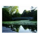 Un puente sobre el lago en parque de la postal