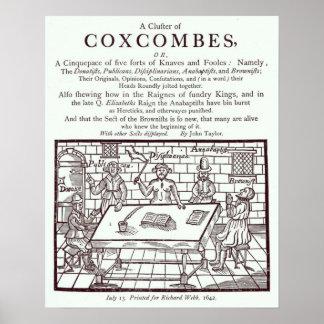 Un racimo de Coxcombes de John Taylor Póster