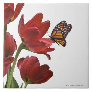 un ramo de tulipanes rojos es visitado por un mona azulejo ceramica