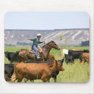 Un ranchero a caballo durante un rodeo del ganado alfombrillas de ratones