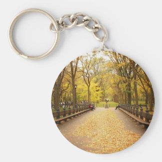 Un rastro de las hojas de otoño, Central Park, NYC Llavero Redondo Tipo Pin