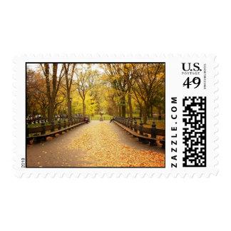 Un rastro de las hojas de otoño, Central Park, NYC Franqueo