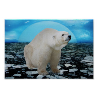 Un rato de los osos polares posters