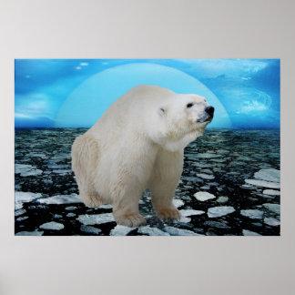 Un rato de los osos polares póster