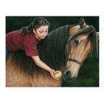 Un regalo para el arte soleado del caballo de Morg Tarjeta Postal