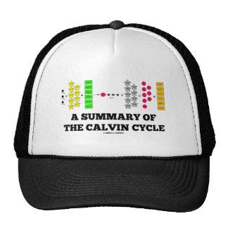 Un resumen del ciclo de Calvin (fotosíntesis) Gorras