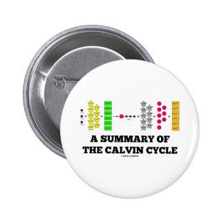 Un resumen del ciclo de Calvin (fotosíntesis) Pin Redondo 5 Cm