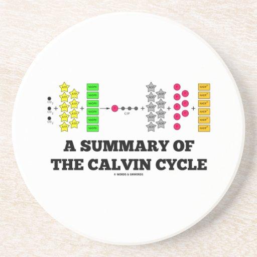 Un resumen del ciclo de Calvin (fotosíntesis) Posavaso Para Bebida