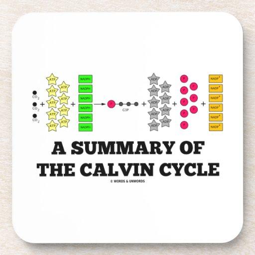 Un resumen del ciclo de Calvin (fotosíntesis) Posavaso
