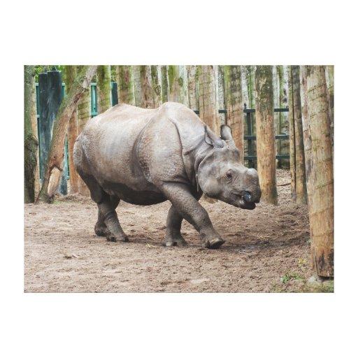 Un rinoceronte de cuernos impresiones en lona estiradas