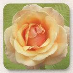 Un rosa es un color de rosa posavasos