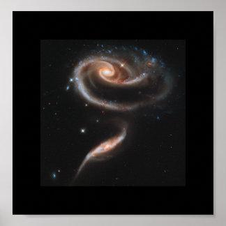 Un rosa hecho de galaxias - telescopio espacial de posters