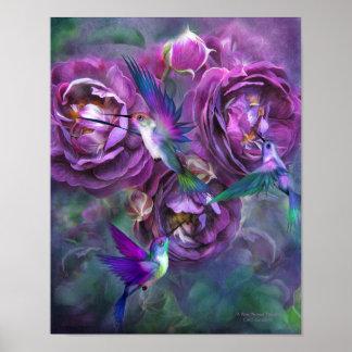 Un rosa nombró el poster/la impresión de la bella