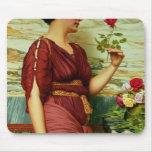Un rosa rojo, rojo alfombrillas de ratón