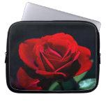 Un rosa rojo romántico fundas computadoras