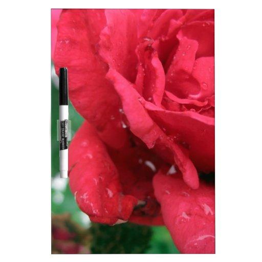 Un rosa rojo tableros blancos