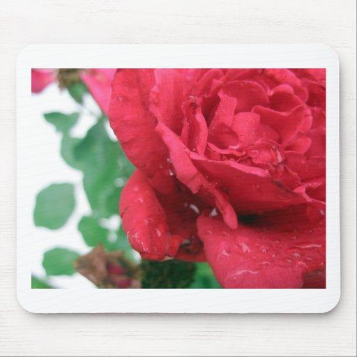 Un rosa rojo tapete de ratones