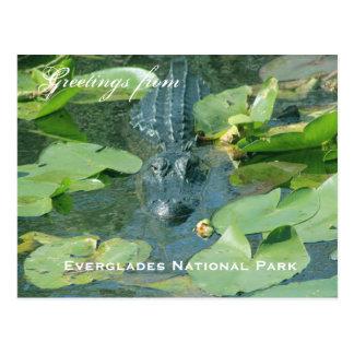 Un saludo de la postal del parque nacional de Ever