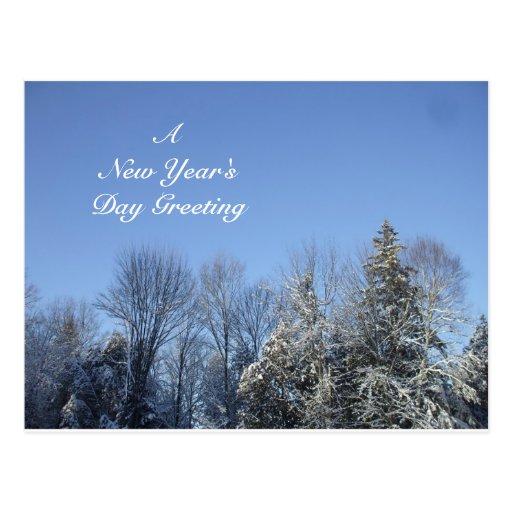 Un saludo del día de Año Nuevo Postal