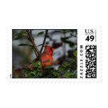 Un sello de encargo del cardenal