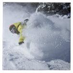 Un snowboarder rasga vueltas untracked del polvo e tejas