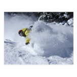 Un snowboarder rasga vueltas untracked del polvo e tarjeta postal