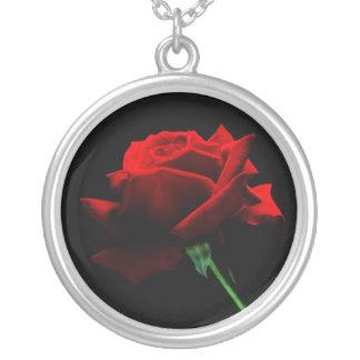Un solo collar del rosa rojo