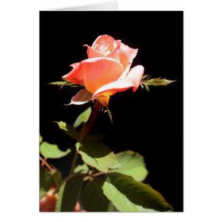 Un solo color de rosa - a tarjeta de felicitación