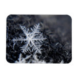 Un solo copo de nieve encendido se destaca iman flexible