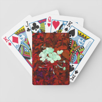 Un tacto de la oscuridad baraja de cartas