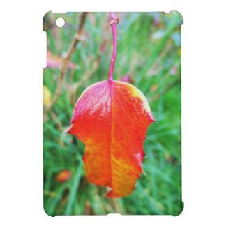 Un tacto del otoño
