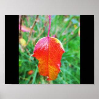 Un tacto del otoño póster