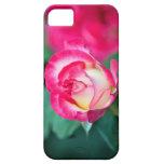 Un tacto del rosa… iPhone 5 Case-Mate carcasas