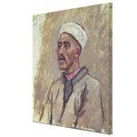 Un tártaro siberiano lona estirada galerías