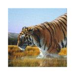 Un tigre ama el agua lona estirada galerias