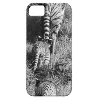 Un tigre con sus dos cachorros en el parque funda para iPhone SE/5/5s